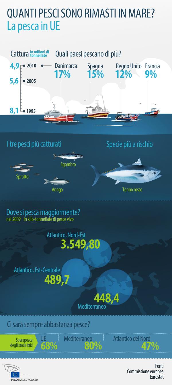 Quanti pesci sono rimasti nei mari europei?