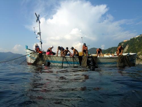 I pescatori della tonnara di Camogli durante la levata della rete (Foto M. Faimali)