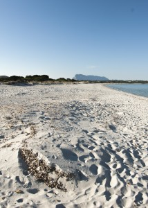 """Uno scorcio della splendida spiaggia """"La Cinta"""" che separa il mare aperto dallo stagno di S. Teodoro. (Foto di M. Faimali)"""