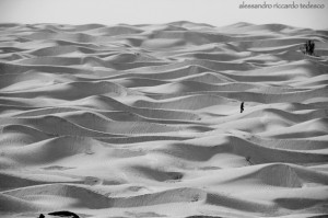 deserto IMG_4314 xxx
